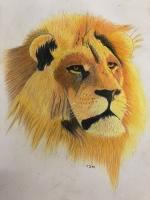 The Fiery Lion