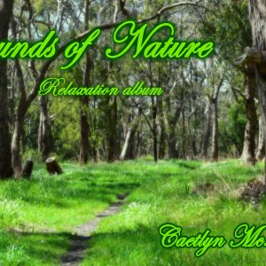 Sounds of Nature - Multimedia artist